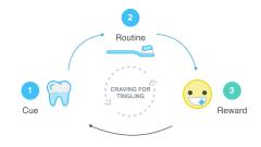 Cue-routine-reward